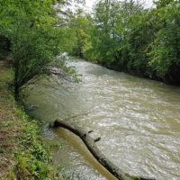 Sisseln Hochwasser